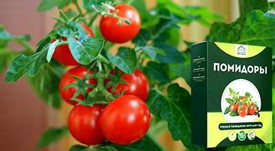 mini-ferma-pomidory