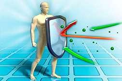 Артрозакс укрепляет иммунитет.