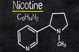 Smoke Out содержит безопасный медицинский никотин.