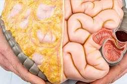 Keto Fit Shake очищает от жировых прослоек внутренние органы.