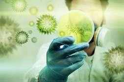 Средство Биосептик уничтожает вирусы, бактерии, грибковые споры.