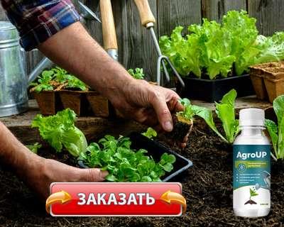 Удобрение AgroUp купить по доступной цене.